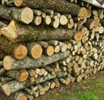 Chaufferies bois : signature de l'Ademe et du SDEC Energie
