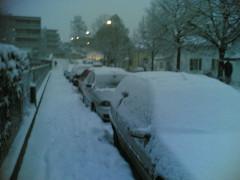 Bilan mensuel / Janvier 2007 : tempête et chutes de neige