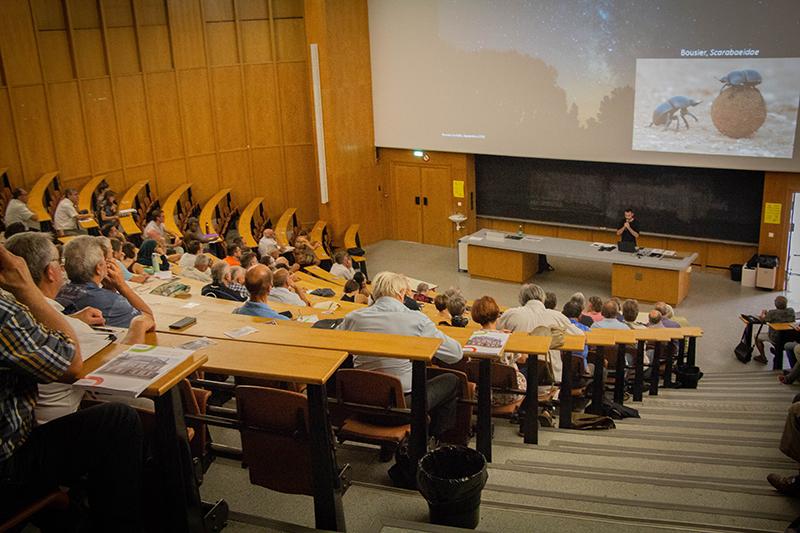 Éclairage public et biodiversité : comprendre pour mieux agir